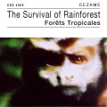 The Survival of Rainforests