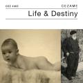 Life and Destiny