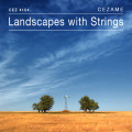 Landscapes with Strings