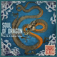 Soul of Dragon