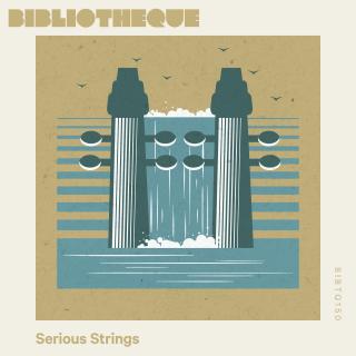 Serious Strings