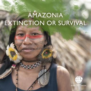Amazonia Extinction or Survival