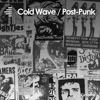 Cold Wave / Post-Punk