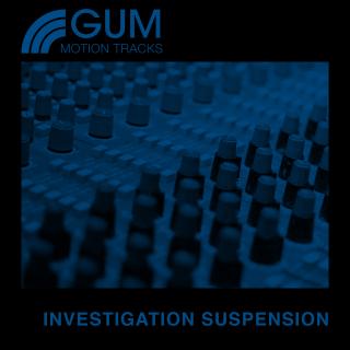 Investigation Suspension