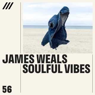 James Weals - Soulful Vibes