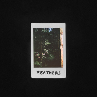 Kulture - Feathers
